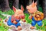 Тады рады свинка